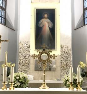 Vilnius - Az Isteni Irgalmasság kegyképe