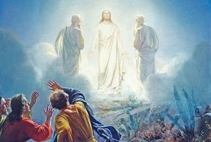 transfiguration-525